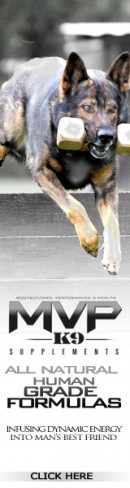 MVP K9 Supplements in Stock Now